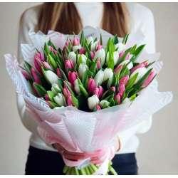 Букет из 51 тюльпана № 53