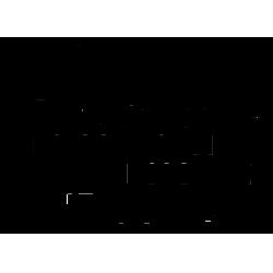 Надпись на шар № 25