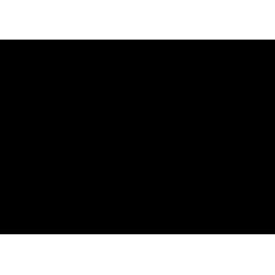 Надпись на шар № 9