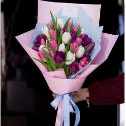 Букет из 25 тюльпанов № 49